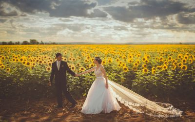 הפורטל המלא להפקת חתונות קטנות